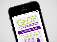 GRDF DATA & INFOG